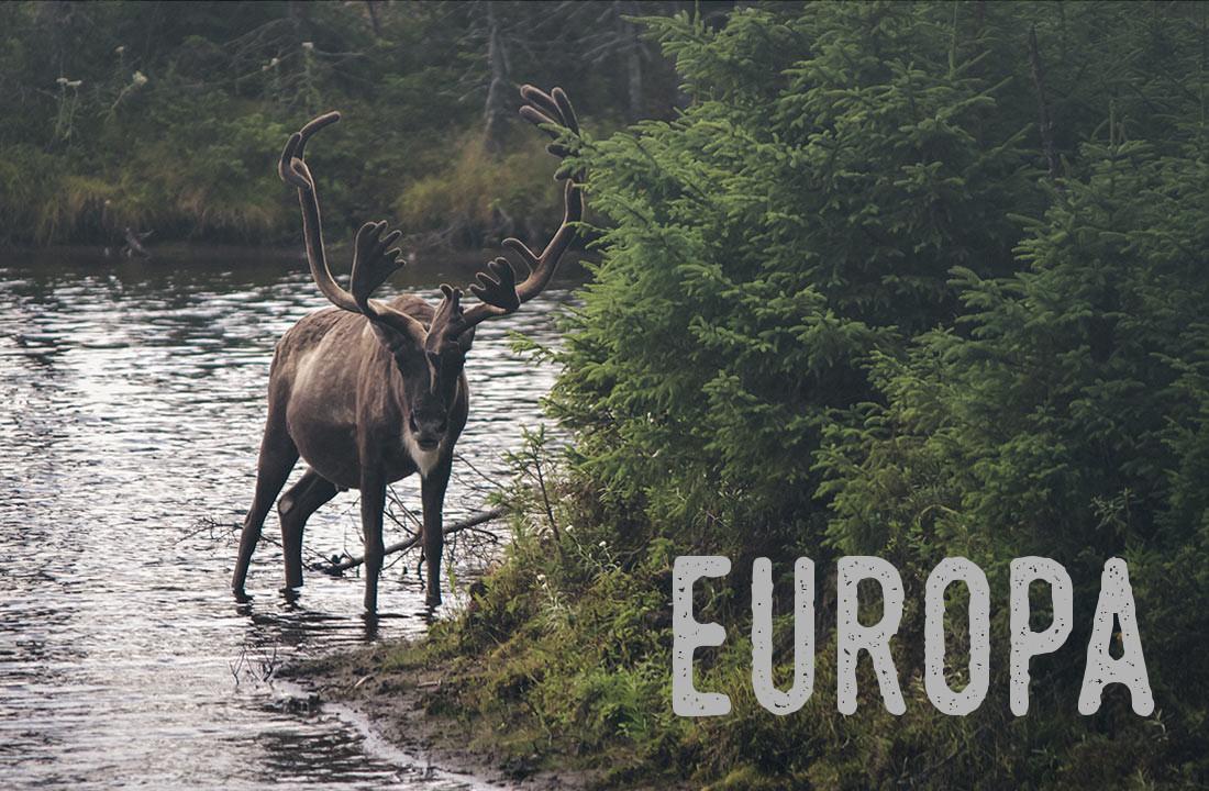 europa1-home